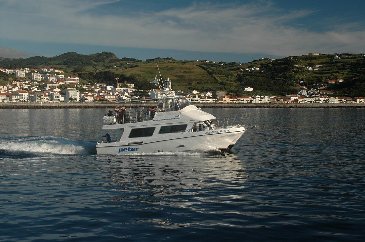 Fotografia de um dos catamarãs da empresa Peter Cafe Sport durante um passeio na ilha do Faial