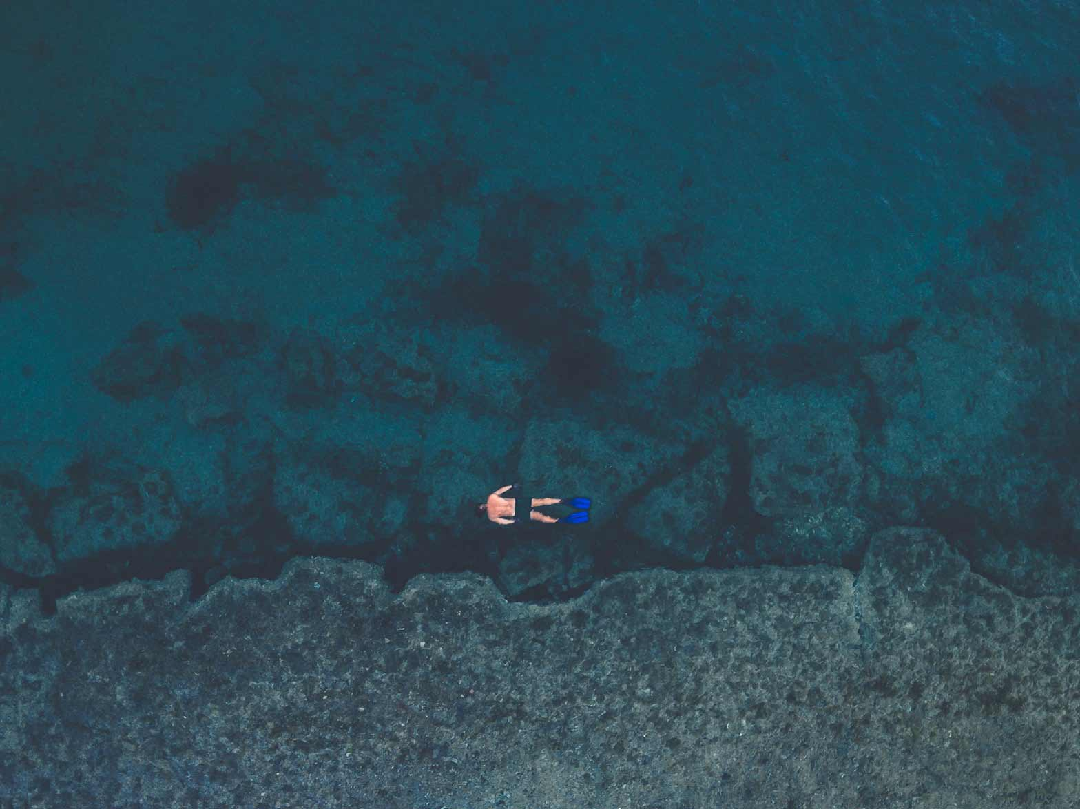 A man diving in the blue sea of Faial, in the Azores